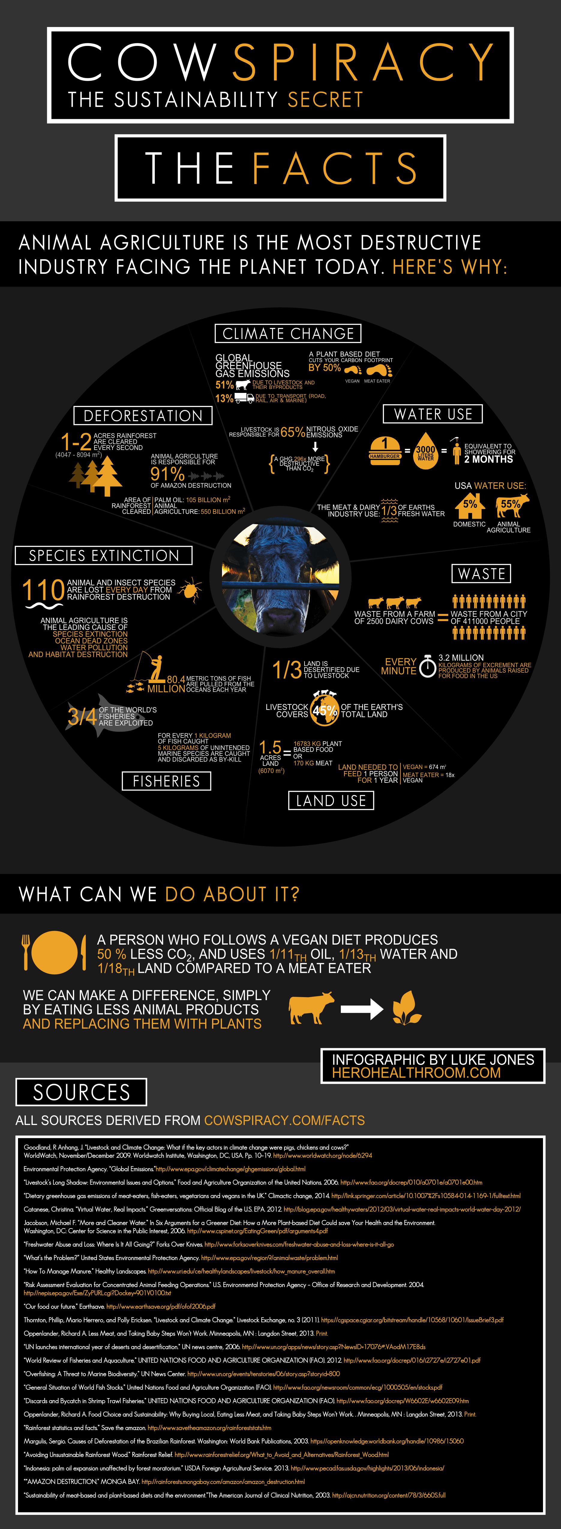 Cowspiracy-Infographic-Metric